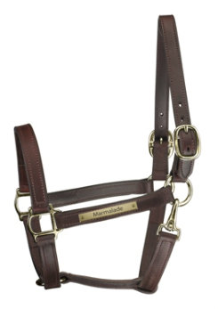 Perri's Custom 1 Track Halter with Snap Throat Best Price