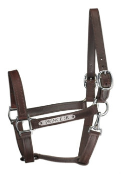 Perri's Custom 1 Track Halter with Snap Throat-Chrome Best Price