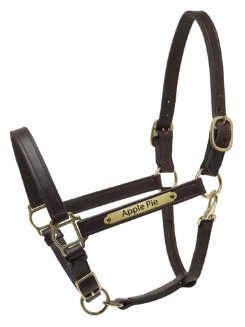 Perri's Custom 1 Deluxe Turnout Halter Best Price