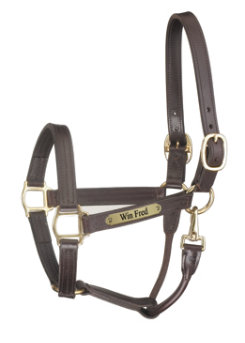 Perri's Custom 1 Track Show Halter with Snap Throat Best Price