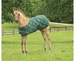 Lami-Cell Foal Blanket