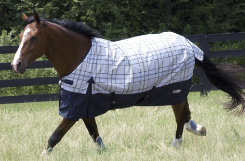Lami-Cell Granite Plaid Medium Turnout Blanket Best Price