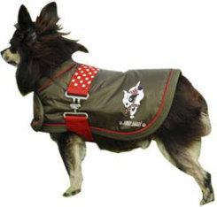 Jack Lami Dog Blanket Best Price