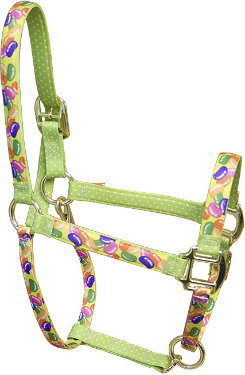 High Fashion Horse Holidays Halter