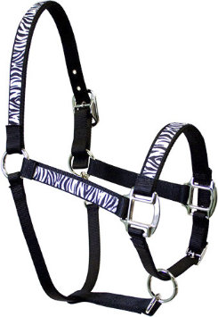 Equine Elite Black Base Breakaway Halter Best Price