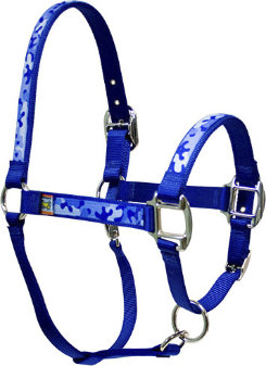 Equine Elite Blue Base Breakaway Halter