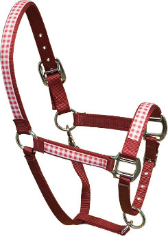 Equine Elite Red Base Breakaway Halter Best Price
