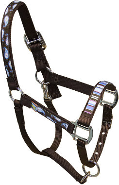 Equine Elite Brown Base Breakaway Halter Best Price