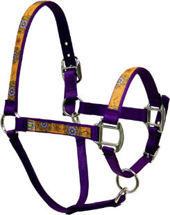 Equine Elite Purple Base Breakaway Halter Best Price