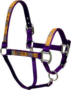 Equine Elite Purple Base Halter Best Price