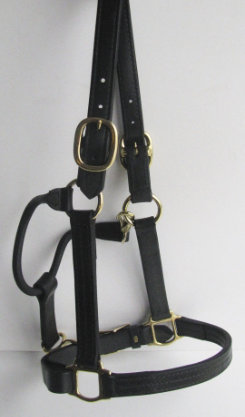 Sound Equine Leather Draft Deluxe Halter Best Price