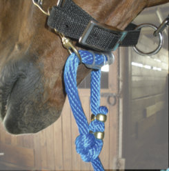 Sound Equine Easy Lead Poly Lead Line Best Price