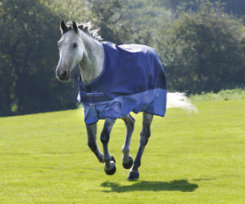 Shires Summer Tempest Lightweight Horse Turnout Blanket