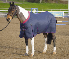 Shires Westbourne Lightweight Horse Stable Blanket Best Price