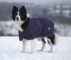 SE Typhoon Wthrprof Dog Coat Best Price