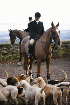 Shires Mens Clifton Hunt Coat Best Price