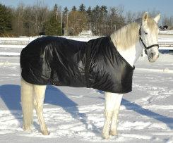 Saratoga Horseworks Primaloft Horse Blanket Liner Best Price