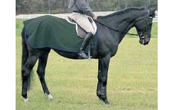 Saratoga Horseworks  PolarTec 200 Exercise Rug Best Price