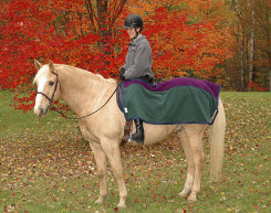Saratoga Horseworks PolarTec 200 Riding Blanket Best Price
