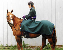 Saratoga Horseworks Fleece Riding Blanket