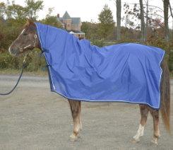 Saratoga Horseworks Adirondack Rainsheet Best Price