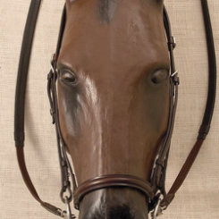 Stubben Icelandic Bridle with Flash Noseband Best Price