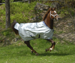 Bucas Power Light Weight Horse Turnout Blanket Best Price