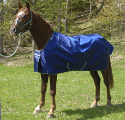 Bucas Smartex All-In-One Heavyweight Turnout Blanket Best Price