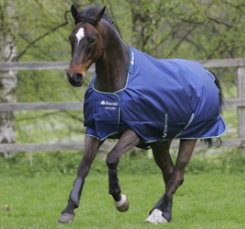 Bucas Smartex Rain Lightweight Horse Turnout Blanket Best Price