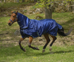 Bucas Smartex Horse Neck Rug Best Price