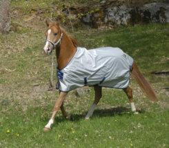 Bucas Sun Shower Lightweight Horse Turnout Blanket Best Price
