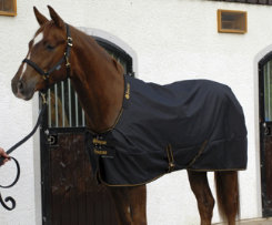 Bucas Irish Lightweight Horse Turnout Blanket Best Price