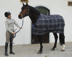 Bucas Celtic Midweight Horse Stable Blanket Best Price