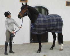 Bucas Celtic Lightweight Horse Stable Blanket Best Price