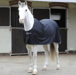 Bucas Power Horse Cooler Best Price