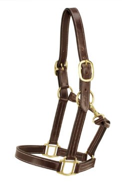 Silverleaf Plain Halter with Brass Fittings