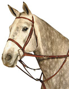 Kincade Martingale Rein Set Best Price