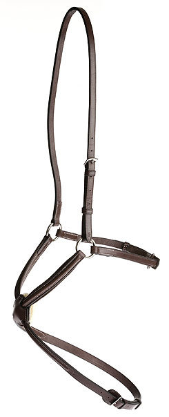 Collegiate Raised Padded Figure 8 Noseband Best Price