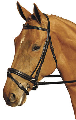 Collegiate Collection Crank Dressage Bridle
