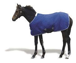 Weatherbeeta Landa Foal Blanket Best Price