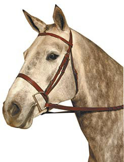 Kincade Flat Snaffle Bridle Best Price