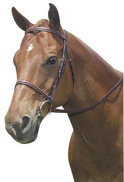 Kincade Raised Braided Bridle