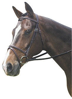 Collegiate Plain Raised Bridle With Flash Best Price