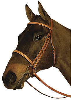 Crosby Raised Fancy Stitched Bridle