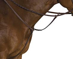 Collegiate Raised Breastplate Standing Martingale Best Price