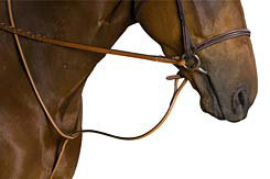 Crosby Raised Standing Martingale Best Price