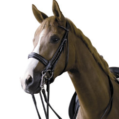 Bates Isabell Werth Satchmo Double Bridle Best Price
