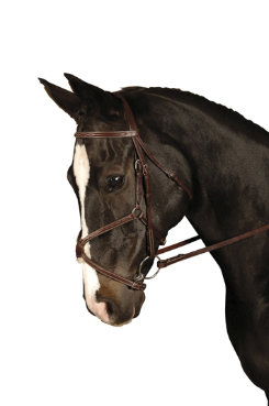 Crosby Figure 8 Bridle Best Price