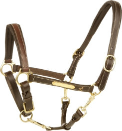 Isabell Werth Fidelity Halter Best Price