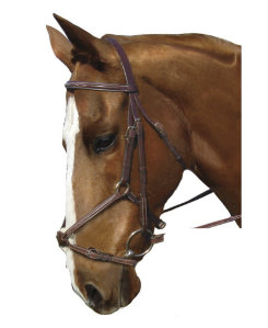 Collegiate Figure 8 Noseband Bridle Best Price